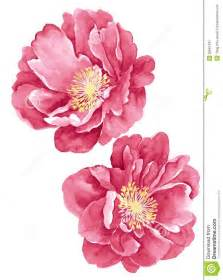 make flower painting 25 best ideas about flower illustrations on