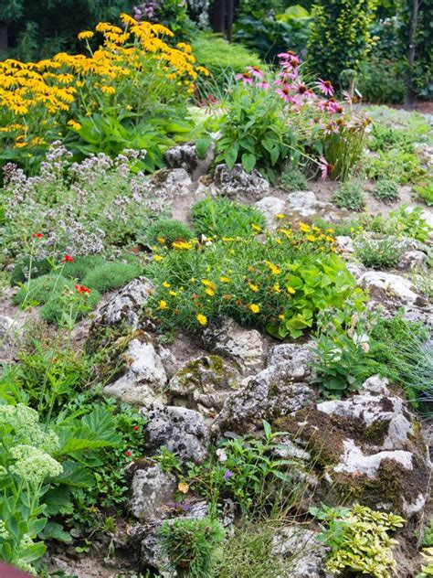 about rock garden 17 best ideas about rockery garden on