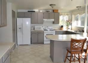 painting kitchen ideas choosing the best painting kitchen cabinets trellischicago