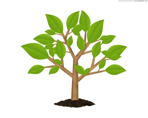 tree symbolism green tree environment symbol psd psdgraphics