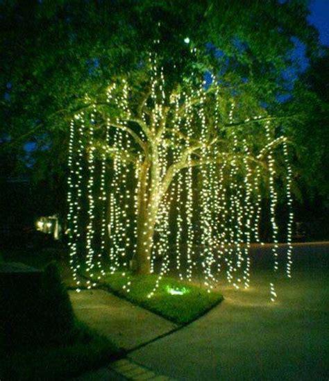 tree lighting ideas top 46 outdoor lighting ideas illuminate the