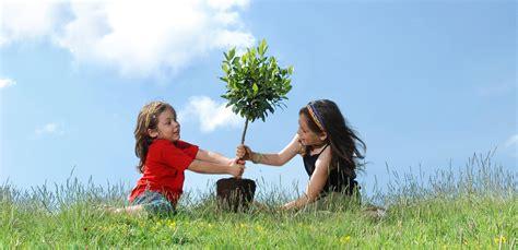 new trees 2014 pretoria country club course news arbor week 2014