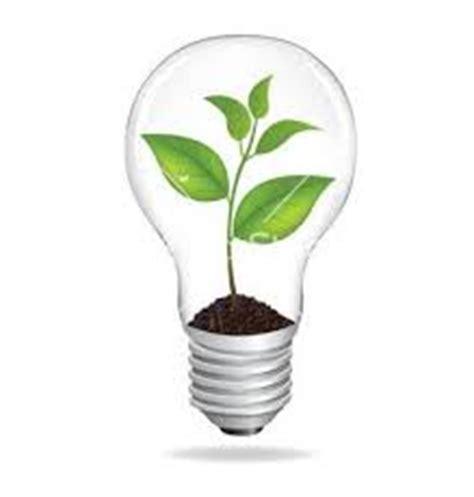 eco lights o que 233 ecologia humana meio ambiente cultura mix