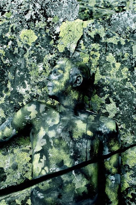 johannes stoetter camouflage paintings by johannes st 246 tter