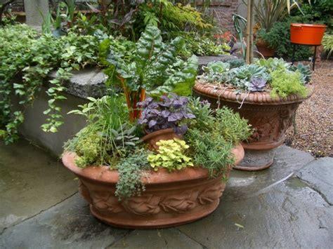 Blumenkübel Bepflanzen Vorschläge by Gro 223 E Pflanzk 252 Bel Bepflanzen Ideen F 252 R Pflanzenkombination