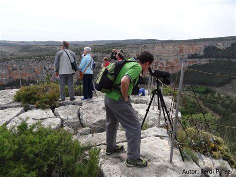 oficina de turismo calatayud rutas ornitol 243 gicas turismo jaraba zaragoza turismo