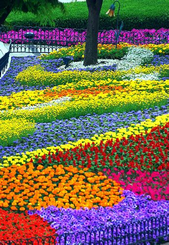 images of beautiful flower gardens flower garden pictures pictures of beautiful flower gardens