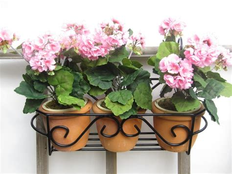 17 best images about garden planters wall balcony