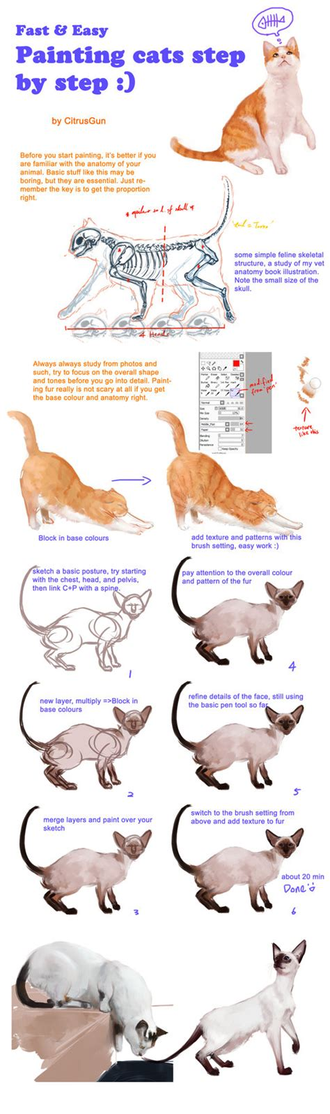 cat tutorial painting cats tutorial by citrusgun on deviantart