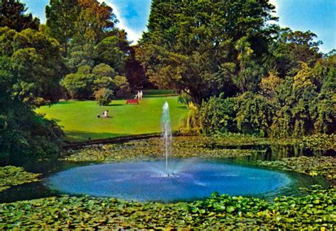 royal botanic gardens melbourne 10 must to visit tourist attractions in melbourne