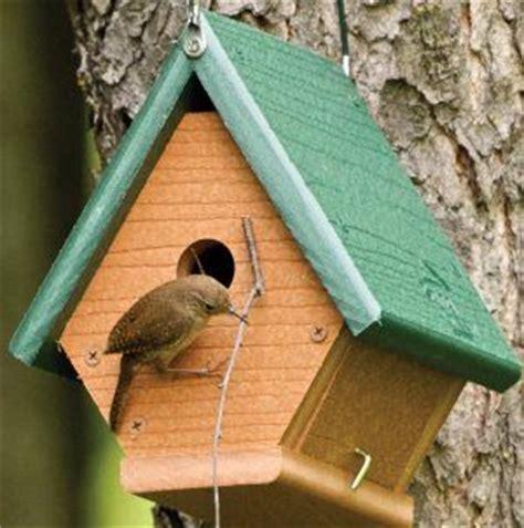 house wren birdhouse plans 25 best bird house plans ideas on diy