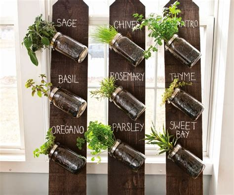 jar herb garden wall s bird gardens diy jar vertical herb