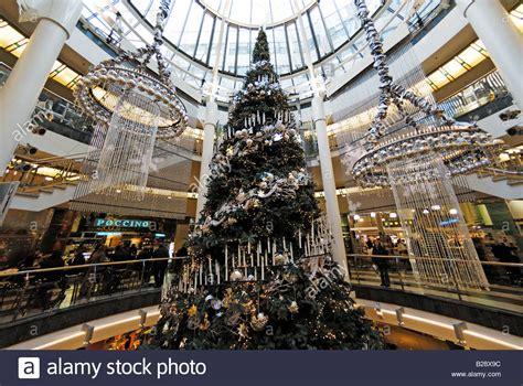 mall tree large tree in shopping mall schadow arkaden in