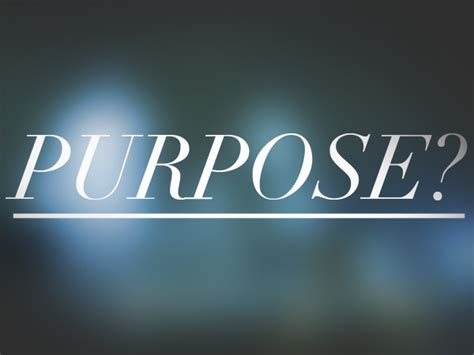 the purpose of creating more purpose for content light websites