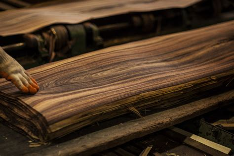 production woodworker phase 5 1 veneer madera sustainable tropical forest