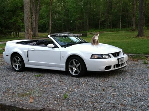 2003 Ford Mustang Cobra by 2003 Ford Svt Mustang Cobra Convertible Related Infomation