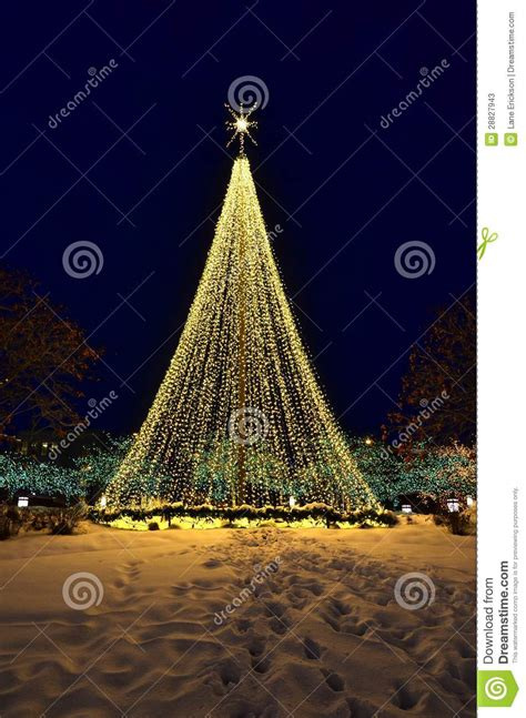 trees made of lights tree made of lights stock photos image 28827943