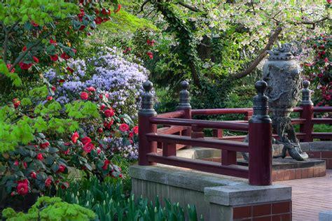 Der Japanische Garten In Leverkusen by Japanischer Garten Leverkusen Eine Paradiesische Blumen Oase