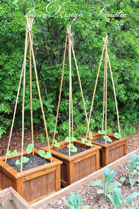 diy vegetable garden boxes diy planter boxes growing green beans vegetable garden