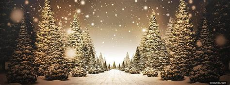 beautiful christmas road photo facebook cover