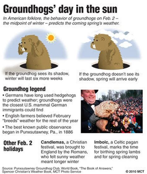 Quotes From The Groundhog Day Quotesgram