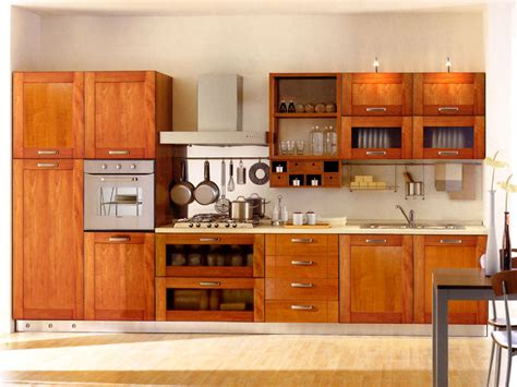 kitchen cabinet design pictures kitchen cabinet designs 13 photos home appliance
