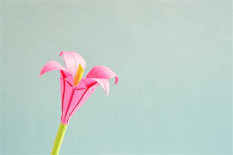 origami small flower free photo origami flower isolated free image on