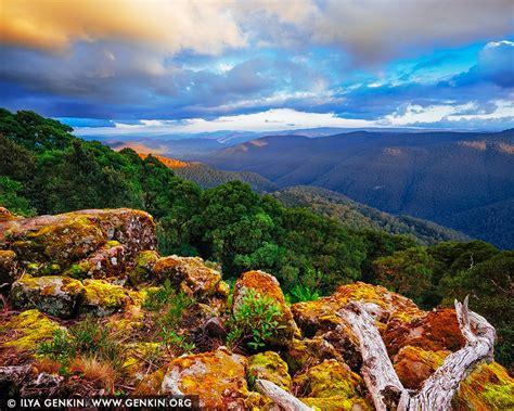 park nsw barrington tops national park at thunderbolt