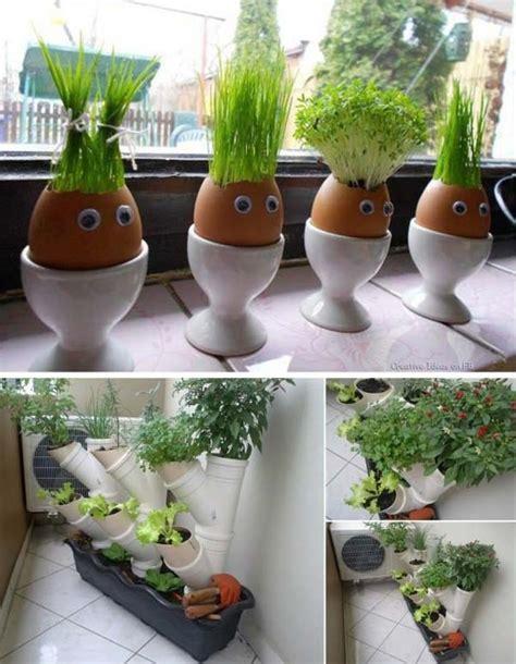 inside garden ideas 26 mini indoor garden ideas to green your home amazing