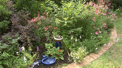 Garden Center Killeen Blazing Color Central Gardener