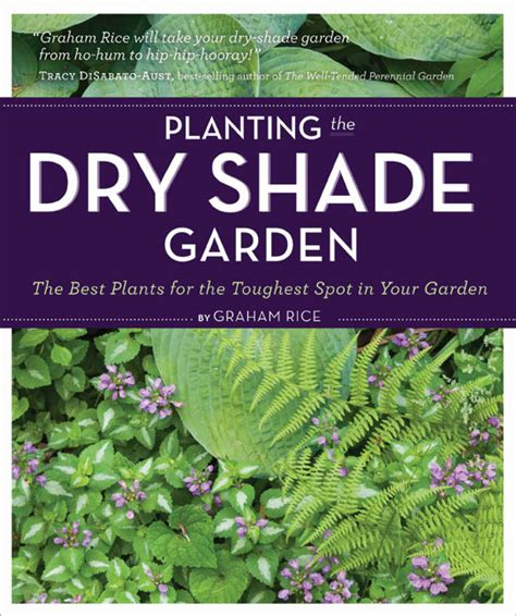 rock garden plants for shade planting the shade garden the best plants for the