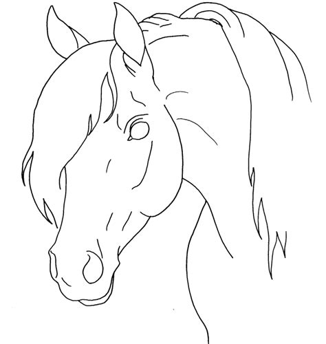 horse coloring page with horse face hand drawn patterned