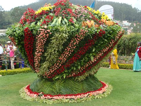 flower and garden show flowering show at garden ooty tn india photo