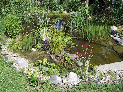 Plural Der Garten by Gartenteich Wiktionary