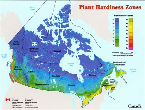 Garden Of Weather Plant Hardiness Zones Explained Grower Direct Fresh Cut