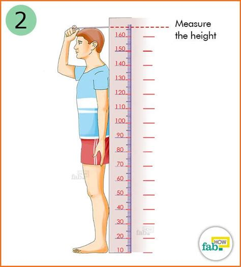 how are measured how to correctly calculate your mass index bmi