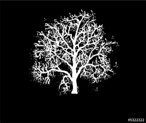 tree on black background quot white tree on a black background quot stock photo and royalty