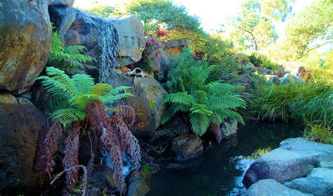 australian national botanic gardens canberra spiritland net canberra act