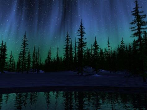 tree of light song northern lights backgrounds wallpaper cave