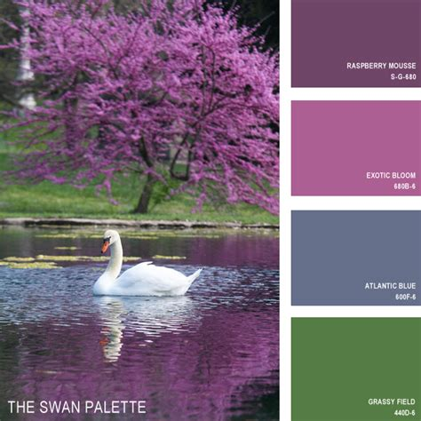 behr paint color nature 11 beautiful color palettes inspired by nature
