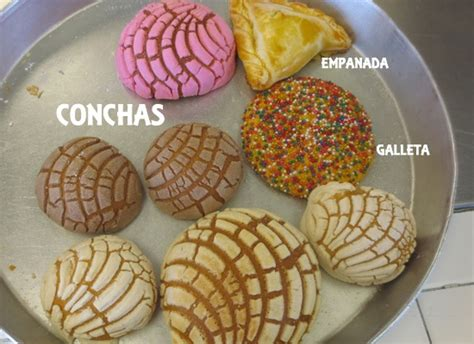 mexican bead mexican sweet bread 101 a trip to the panaderia learning