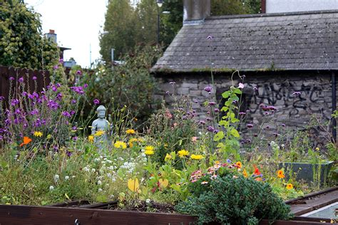 traditional cottage garden flowers cottage gardens cottage flowers and gardens