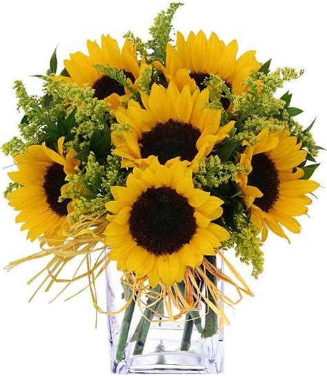 traditional plants sunflower bouquet traditional plants other metro