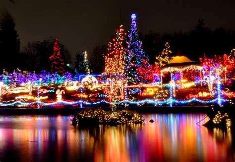 whitecaps lights lights 2014 vancouver the province