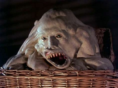 basket case 20 great trash horror movies that are worth your time