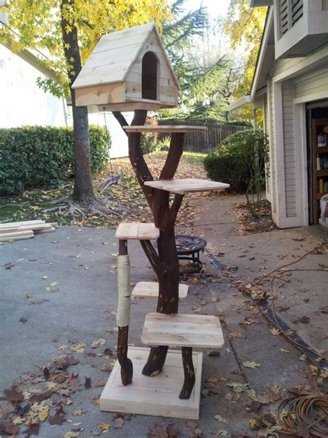 tree for cats best 25 cat trees ideas on
