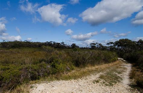 park nsw postcode griffiths walking track learn more nsw national parks