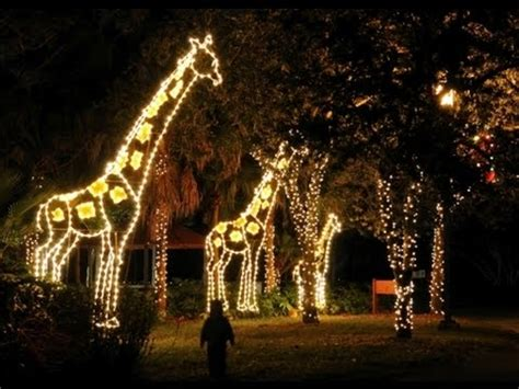 zoo lights miami zoo lights 2014