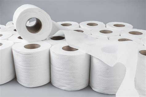 with toilet paper 60 rolls 3ply bulk buy 300 sheet rolls value