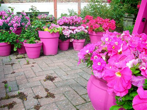 garden flower pots ideas for planting flower pots garden guides